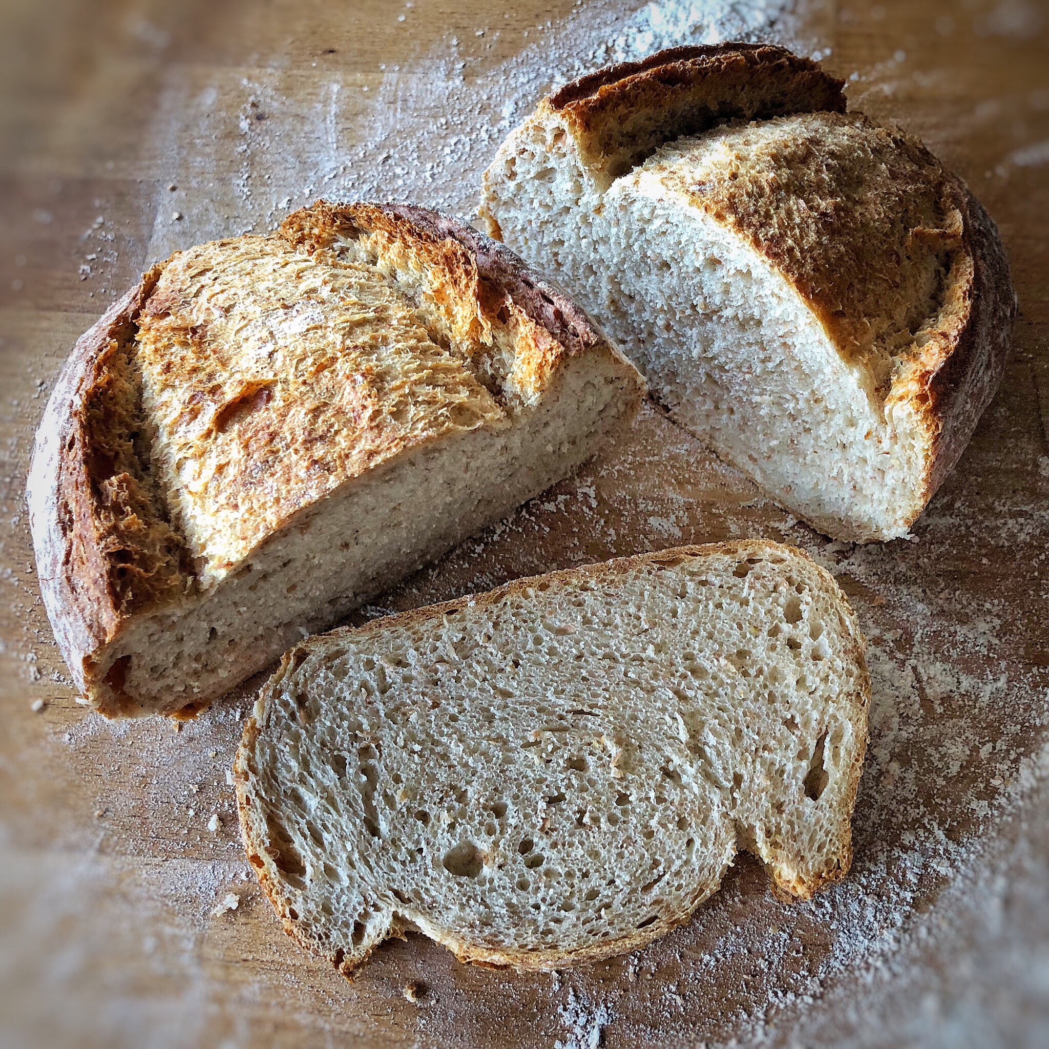 Filone di pane integrale