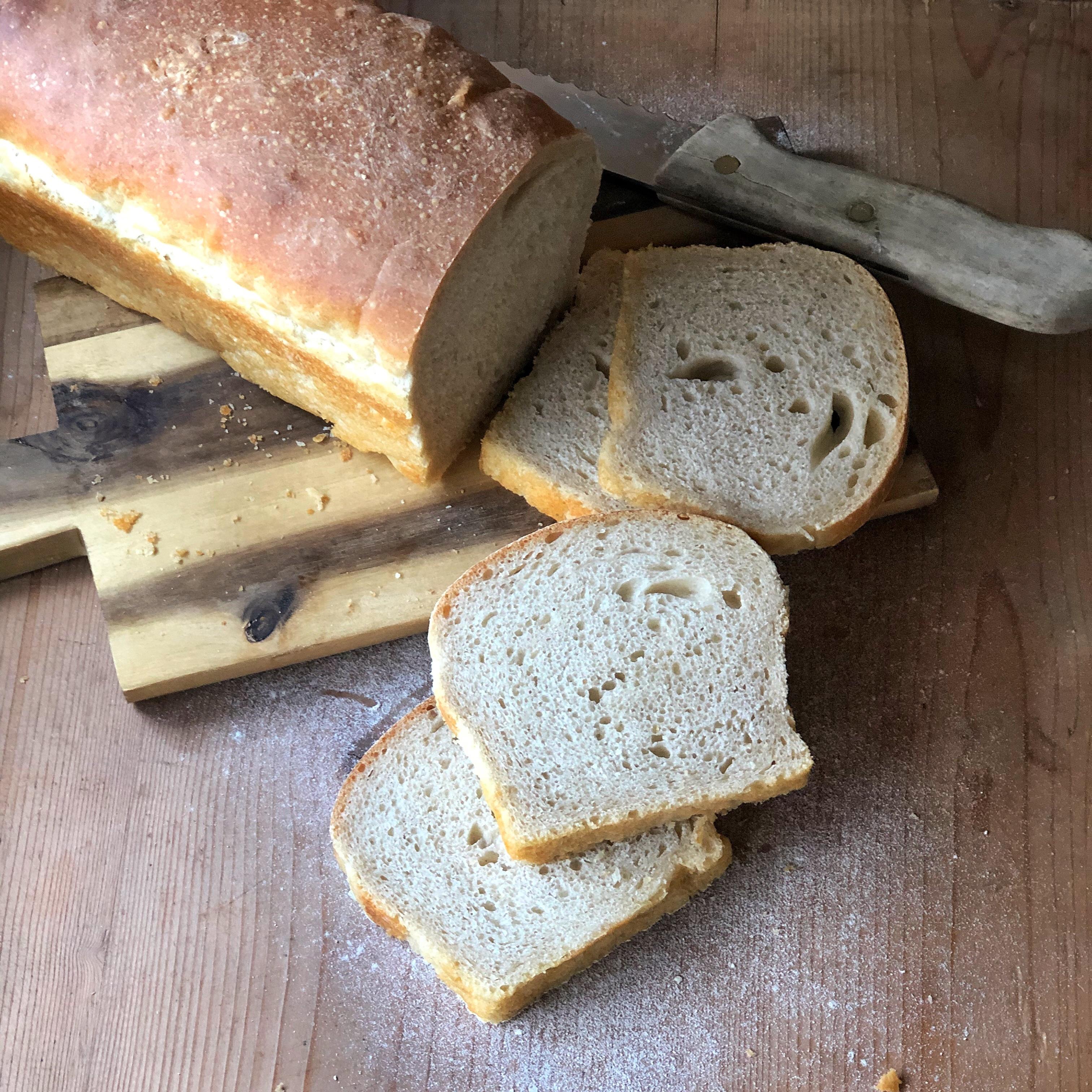Pane in cassetta con pasta madre ideale per toast