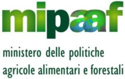 Ravioli di ricotta con Aceto Balsamico di Modena IGP